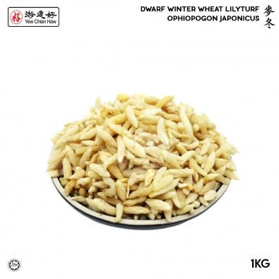 dwarf winter 1kg_3